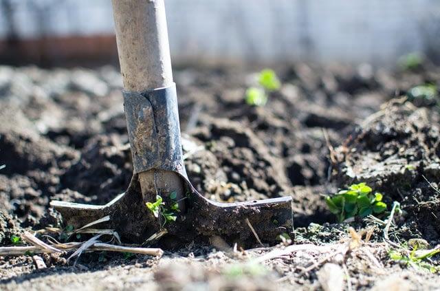 soil backyard farm