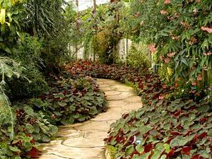 landscape path garden